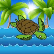 Turtle Shells Pro