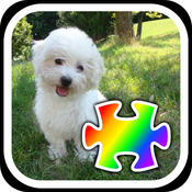 Jigsaw Puppies! FREE Jigsaw Puzzles With Cute Dog and Puppy Photos!
