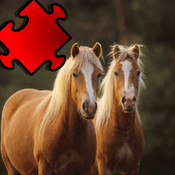 A Horse Puzzle with Haflinger Ponies - Free Learning Game-Fun for Horse Lovers