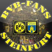BVB Fans Steinfurt e.V.