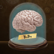 Brain On Brain Off Study Aid and Timer, and the Maximum Mind Oath Lite brain