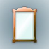 Cam Mirror