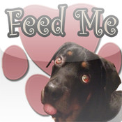 Feed Me (Dog) automatic alarm