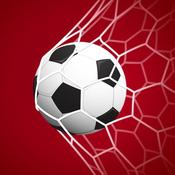 Classic Soccer Goals goals