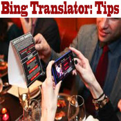 "Translator Tips - Fit for a King/Queen ""for Bing"" sticker translator"