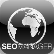 SEO Manager search engine ranking