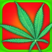 Weed Themes display themes