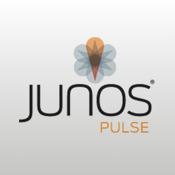 Junos Pulse juniper ssl vpn