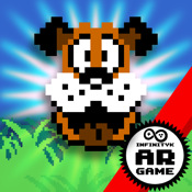 Duck Hunt AR dicomdir