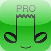 VC Audio Pro audio