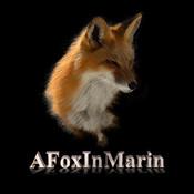 AFoxInMarin for iPad