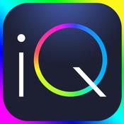 IQ TⒺst