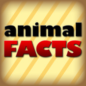 Animal Facts!