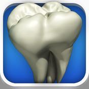 DentalDecide