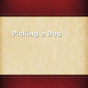 Picking a Dog