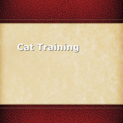 Cat Training.