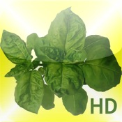 Grow Herbs HD
