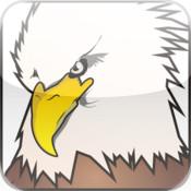 Traffic Eagle