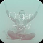 Organ Flow - Gesund mit Qi Gong Meditation von Dr. Gabriel Stux