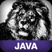 Hardcore Java java tts