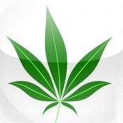 Cannabis Lite