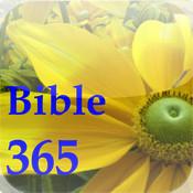 Bible Verse 365