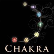 Chakra Wisdom chakra com