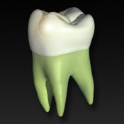 Perfect Tooth secondary program