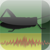 Insects Songs mp3 songs