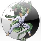 Kung Fu Basics emergence basic