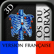 3D Os du Thorax