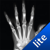 X-Ray Scan - Lite