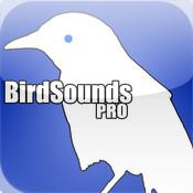 BirdSounds Pro