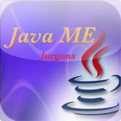 Java ME Jargons java tts