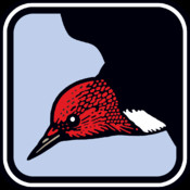 Peterson Birds Pocket Edition - A Field Guide to Birds of North America