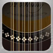 12-String Guitar spweb string