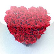 Hearts Calendar