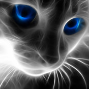 World of Cats HD