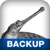 Backup & Recovery recovery for word