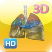 3D Human Lungs HD