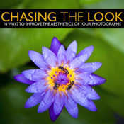 Chasing The Look