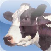Touch 2 Talk Farm
