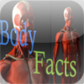 Human Body Facts!