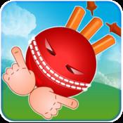 Crazy Cricket HD