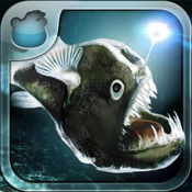 Tap Reef Deep Sea