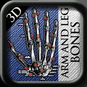 Arm and Leg Bones