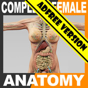 3d Anatomy Female