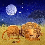 Goodnight Safari