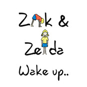 Zak & Zelda Wake Up ds lite zelda