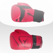 Boxing Beginners kids boxing gloves